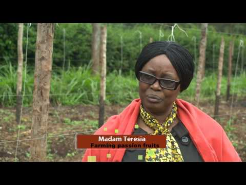 The Kenya Farm Report s01e04