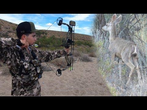 Deer Hunting Arizona's OTC Tag For Velvet Bucks