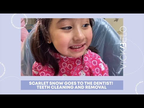 SCARLET SNOW GOES TO THE DENTIST!   Teeth Cleaning and Remov