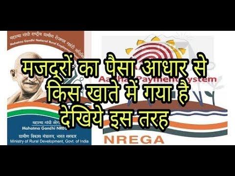 नरेगा का भुगतान आधार से किस खाते में गया है | nrega payment which account credit by adhar