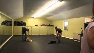 Olympia Kennels / Dog Obedience / Group Class (chester Nh) Thai, Tedd, Bette Davis