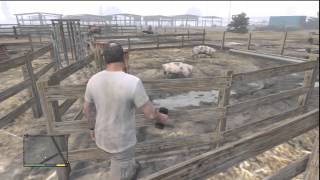 GTA 5- Hunting Boars,Pigs,Cows,Caged Monkeys