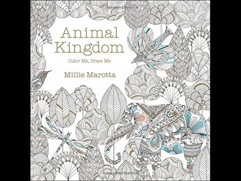 Animal Kingdom Colouring Raccoon : Flip through animal kingdom coloring book by millie marotta youtube