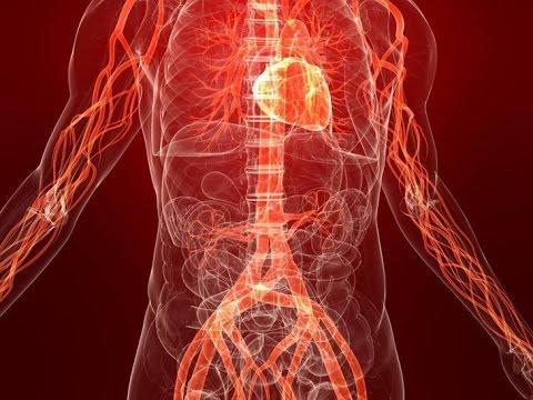 Как снизить холестерин без лекарств: продукты снижающие