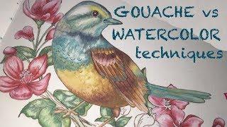How to paint a Gouache Bird, & Watercolor comparison Techniques