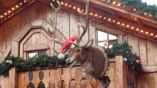 Too Much Gluehwein? No, Just A Singing Reindeer
