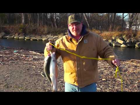 Fishing Opportunities: PA Fish And Boat Commission