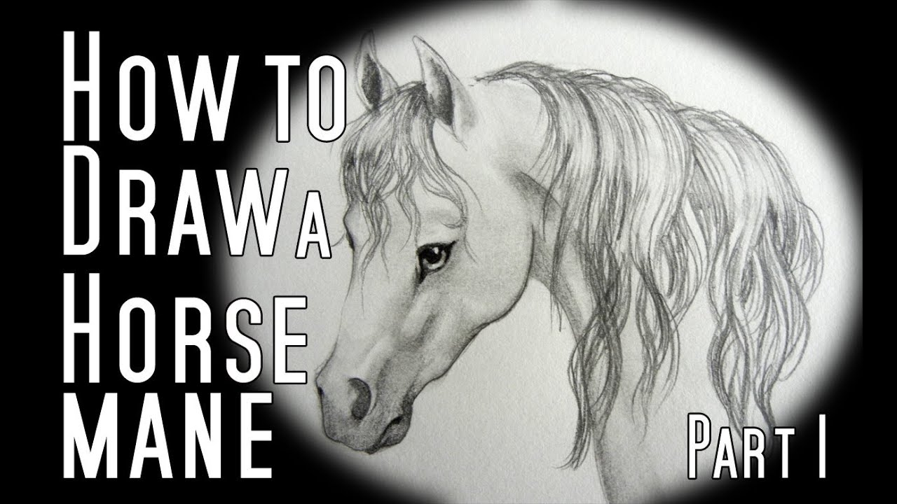 how to draw a horse mane youtube