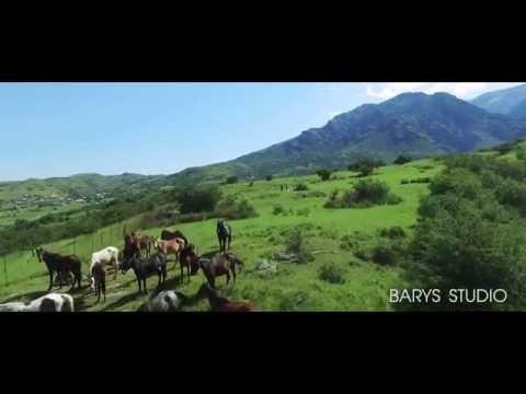 "SHYMKENT CITY ""BARYS STUDIO"" Kyzyl-ORDA #infobarys"