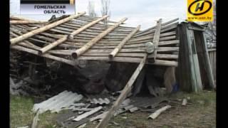 Ураган в Гомельской области
