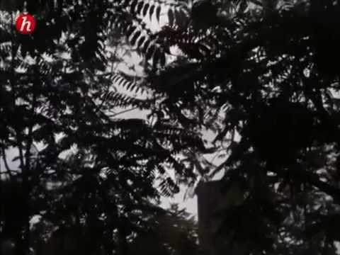 Les Heures Chaudes de Montparnasse  10 l 14  La voix des poètes 51'59'' 720x540 MP4 {Fr 1991 & Histo