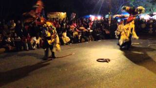 Carnaval Tepeyanco 2014 - Culebra