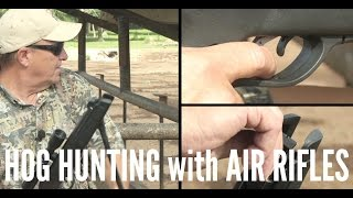 Hog Hunting with a Gamo Air Rifle