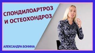 видео Видео и обучающие курсы по лечению суставов и позвоночника