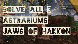 Jaws of Hakkon All 3 Astrariums Solved (Frostback Basin) - Dragon Age Inquisition DLC