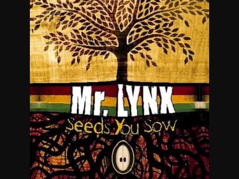 Mr Lynx - Not Going Down