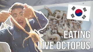 Eating Live Octopus!!! - Korea day 3 & 4