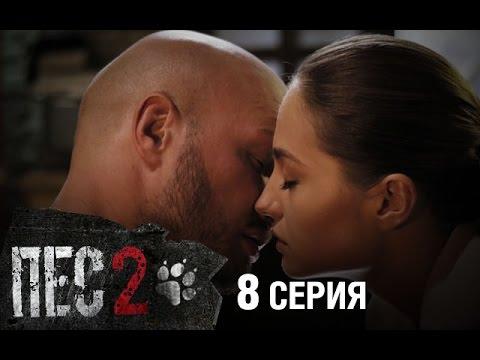 Смотреть онлайн все серии сериала Пес (2 сезон)