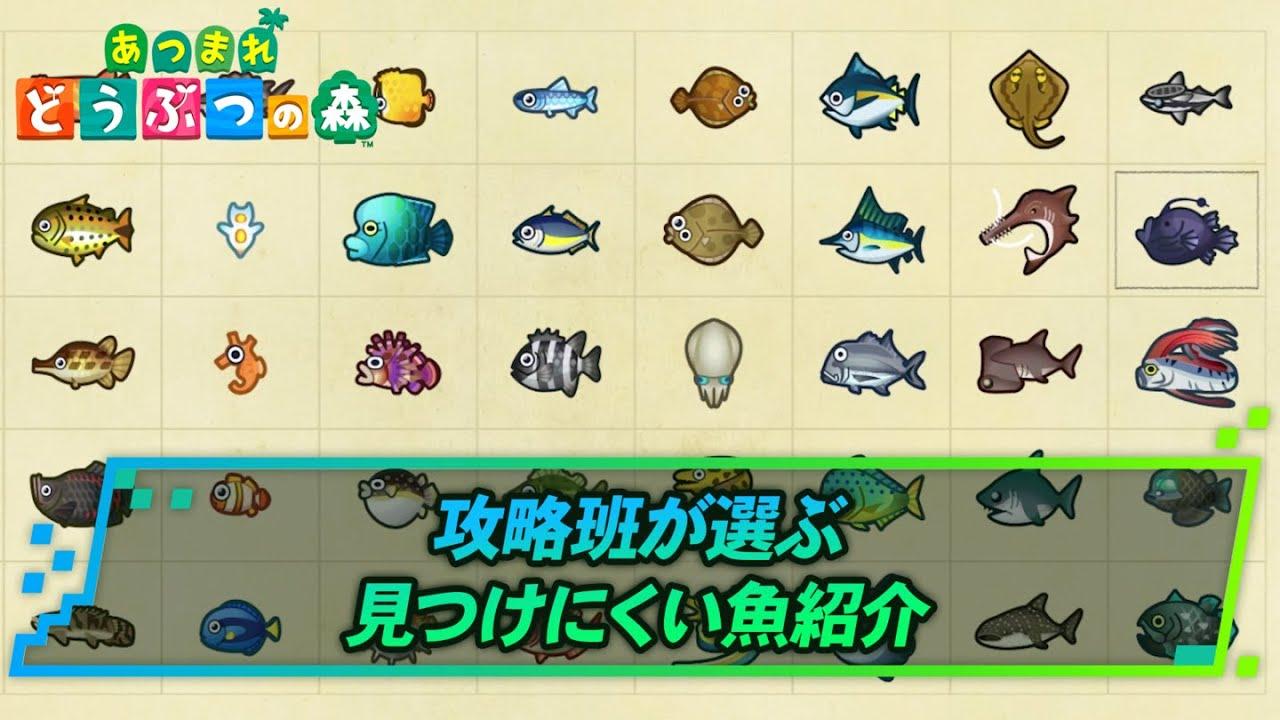 あつ森 魚価格表