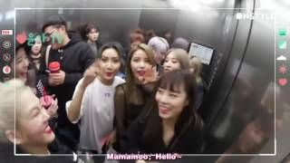 [Eng Sub] SNSD Hyoyeon YoonA meets Mamamoo  (MoonByul X Hyoyeon interaction!)