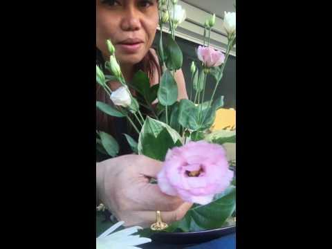 ยายณีโชว์การจัดดอกไม้ให้แม่บ้านสาวๆค่ะตามคำขอ