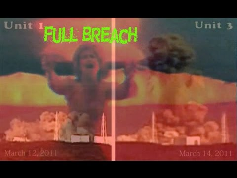 WikiLeaks Fukushima Full Breach Radiation Wide Spread News Told Not to Say MELTDOWN