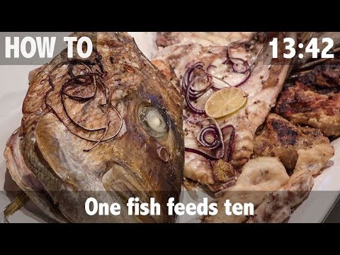 One Fish Feeds Ten