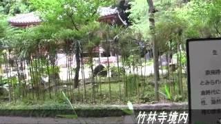 奈良時代の高僧、行基が眠る竹林院をめざして歩きました。