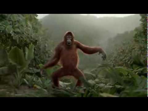 Un orang-outan danse pour une pub de jus d'orange