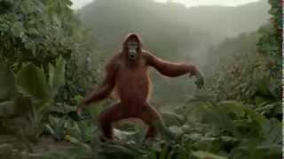 Un orang-outan danse pour une pub de jus d