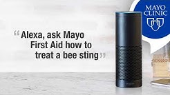 First Aid for a Bee Sting