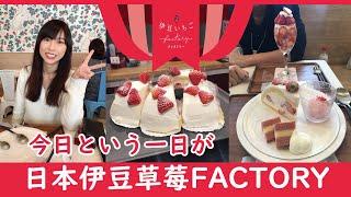 2019年3月27日 草莓蛋糕专卖店