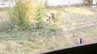 В Красноярске на ул. Рокоссовского найден труп мужчины