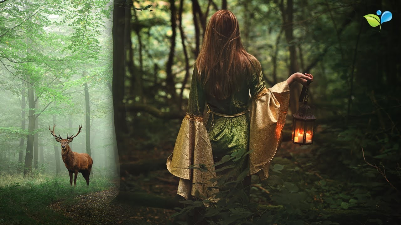Download Enchanted Celtic Music | 432 Hz Nature Music | Magical Forest Sounds