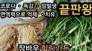 코로나이기는  삼채 면역력에 최고의 식물