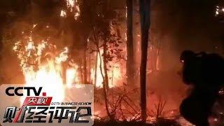 《央视财经评论》 20191207 山火年年有 今年格外凶?| CCTV财经