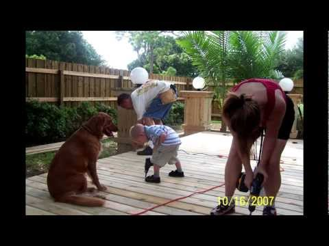 Build Your Own Deck Diy Deck Building And Design On Budget