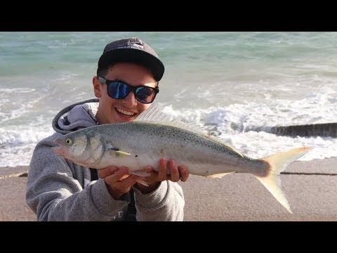 Epic Port Noarlunga Salmon Fishing With Lures!