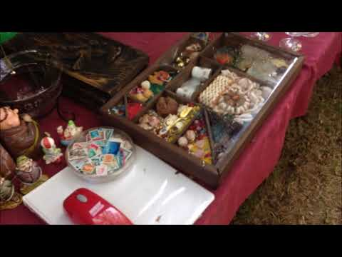 Estate Auction - Shocking