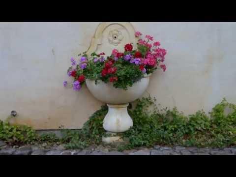 KIS - HIDDEN BEAUTY - THE SONOMA VALLEY - BRIAN CRAIN - ADAGIO CON AMORE