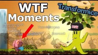Transformice - WTF Moments #2 [HUMOR]