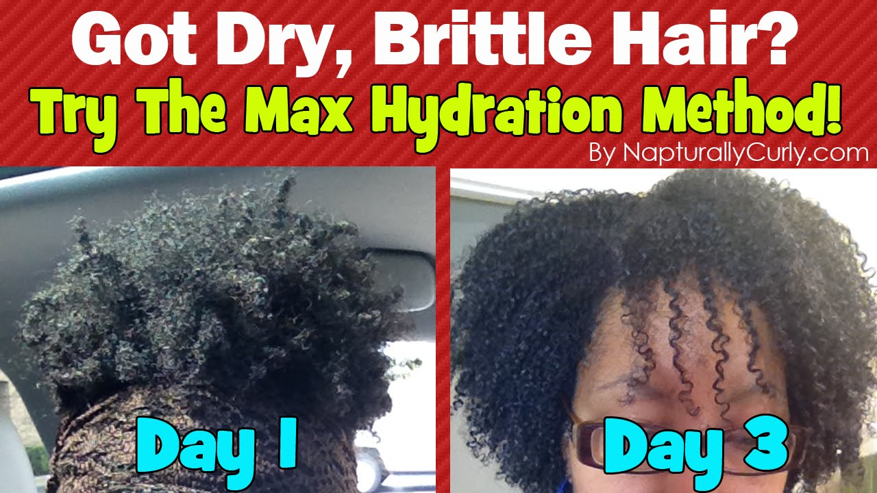 Max Hydration Method Results After 3 Days Wash And Go
