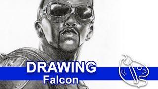 Drawing w Pencils: Falcon Portrait
