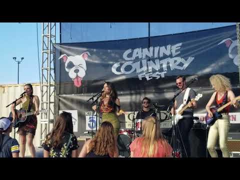 Honey County - Shake it off - Silverlake Mp3
