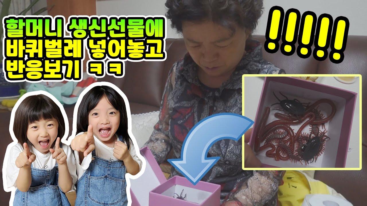 할머니 생신선물에 바퀴벌레 모형 넣어놓고 몰카하기ㅋㅋ 과연 할머니의 반응은? 마지막 반전 감동주의 가족일상 브이로그
