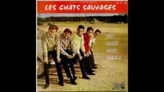 Les Chats Sauvages avec Mike Shannon  -  Merci     ( 1964 )