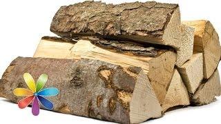 Как выбрать дрова на пикник - Совет от Все буде добре - Выпуск 383 - 30.04.14 - Все будет хорошо