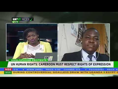 TVC NEWS NIGERIA ON CAMEROON ANGLOPHONE CRISIS