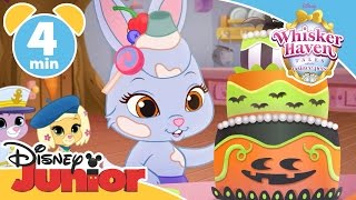 Whisker Haven Tales | Halloween in Whisker Haven | Disney Junior UK