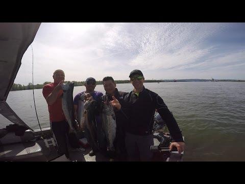 Spring Chinook Salmon fishing on the Columbia River in Portland, Oregon April 6, 2016.
